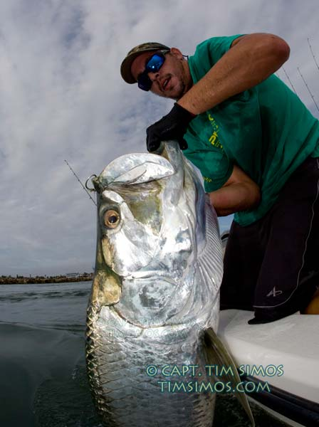 big tarpon vero beach guide